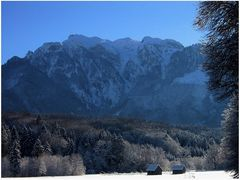 Zauberhafte Stimmung im Naturpark Untersberg