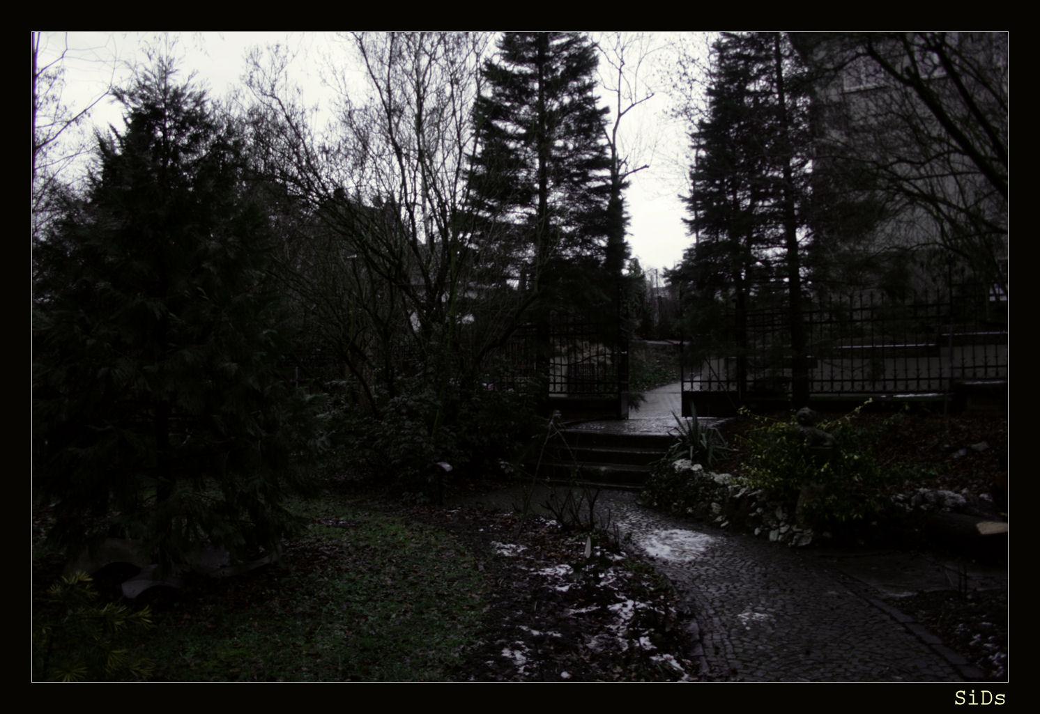 zauberhafter Vorgarten