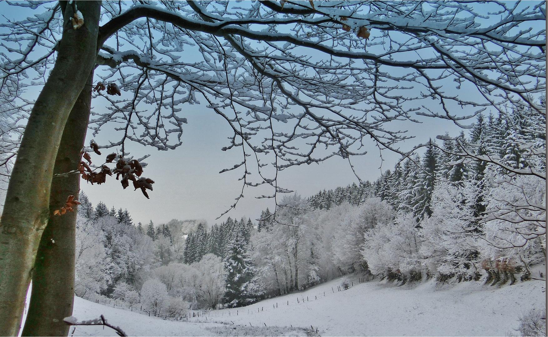 Zauberhafter Winter - davon träume ich..