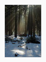 Zauberhaftes Licht