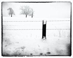 Zaun am Schneefeld