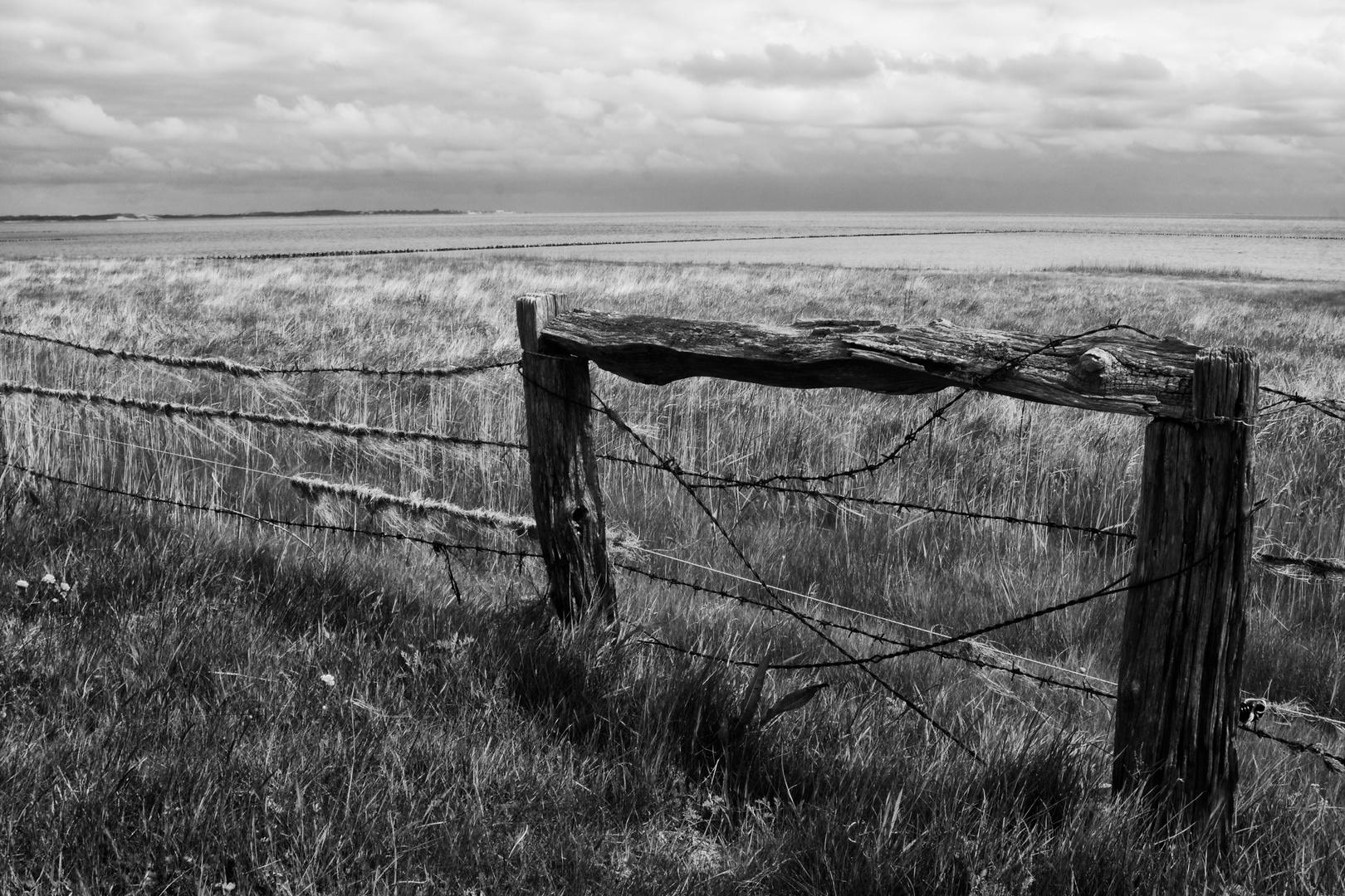 Zaun auf Sylt.