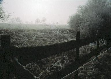 Zaun im Nebel