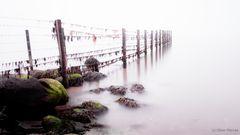 Zaun im Wasser
