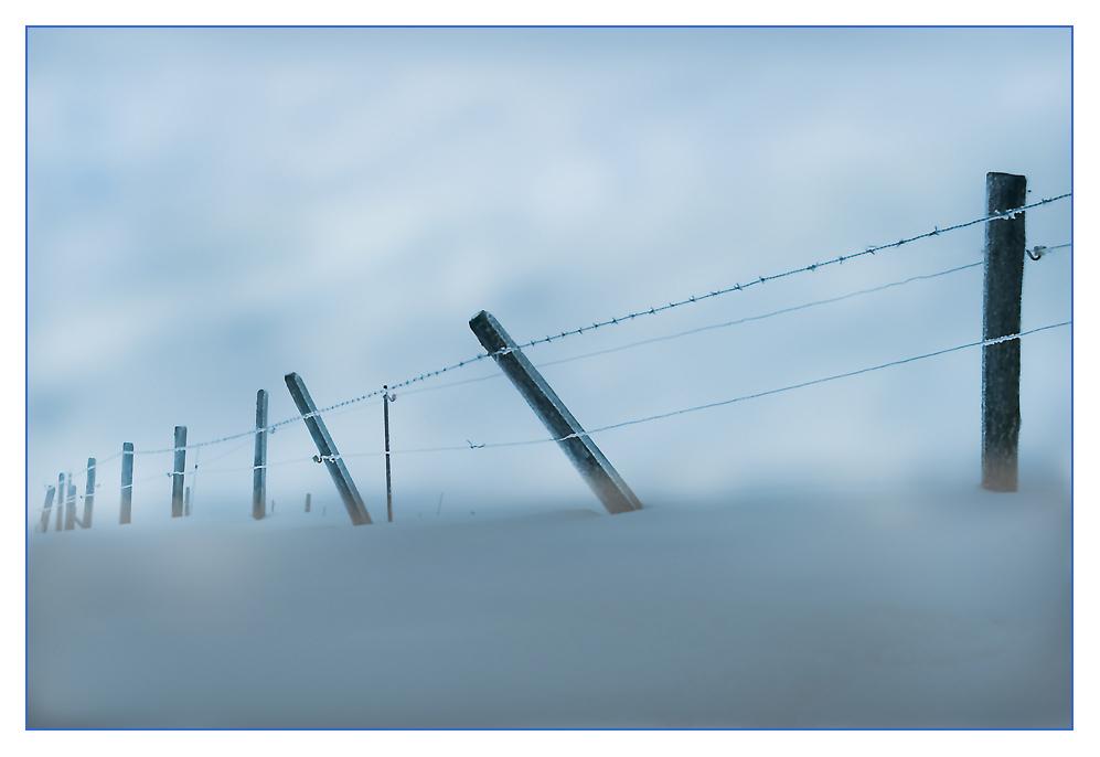 Zaun im Winternebel