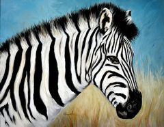 Zebra... watching 2012