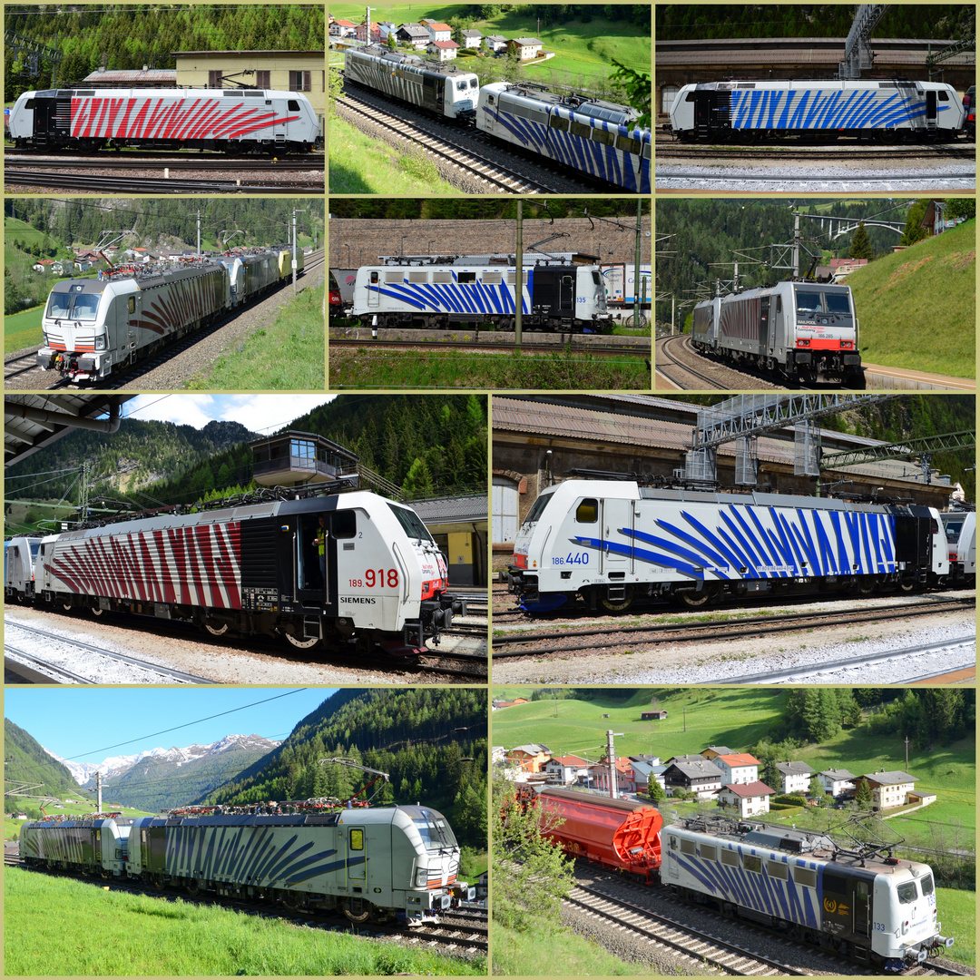 Wildbahn