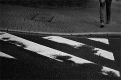 Zebrastreifenbild