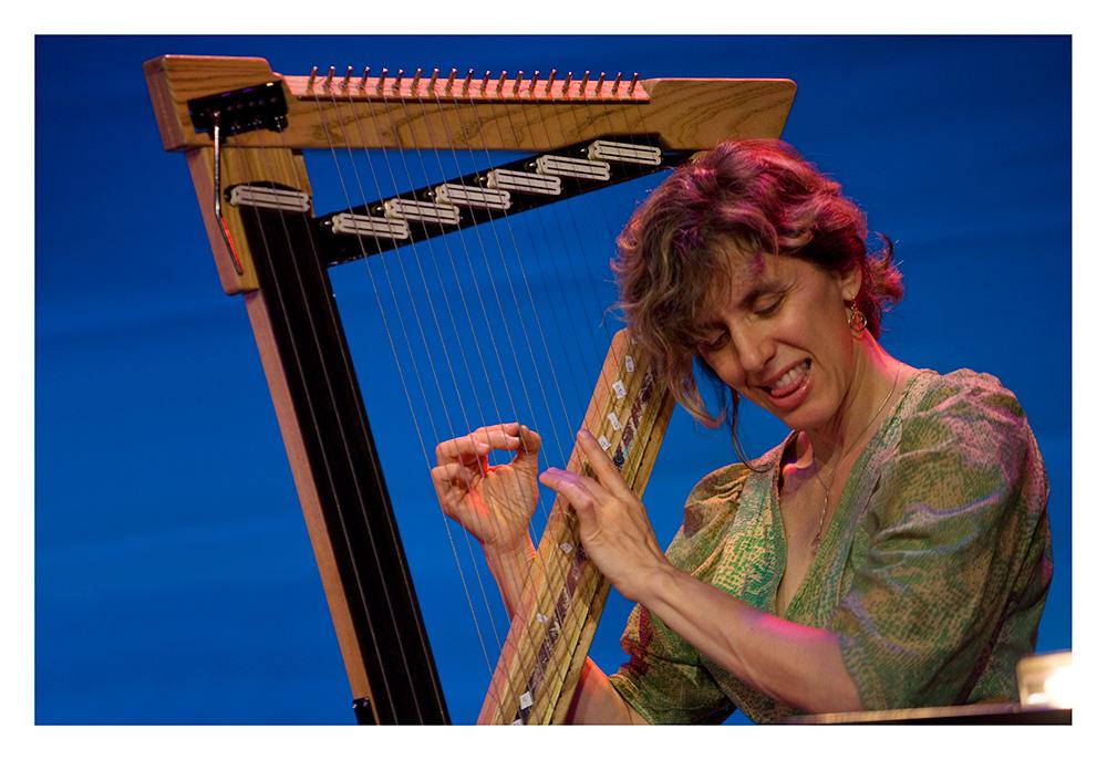Zeena Parkins --- Rova:Orkestrova's Electric Ascension / Jazzfestival Saalfelden 2009