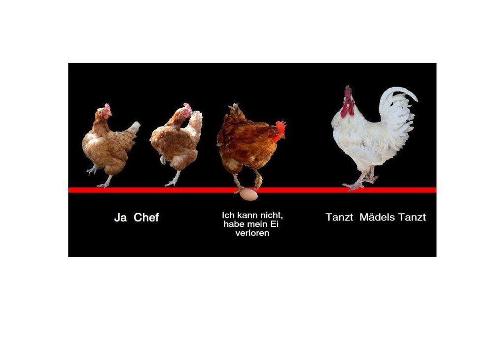 Zeichnung1ganz fertig die hühner