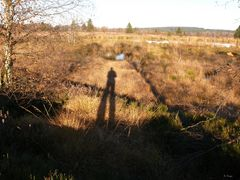 Zeit der langen Schatten