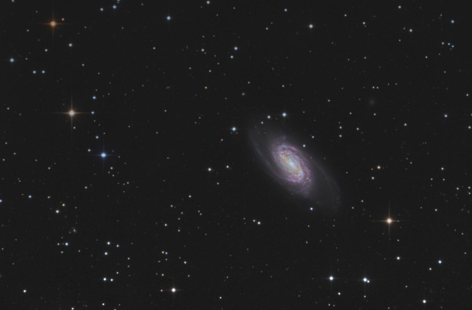 Zeit für Galaxien: NGC2903 im Sternbild Löwe