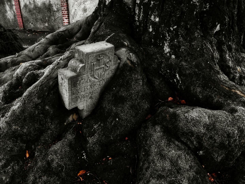 Zeit - Natur - Stein