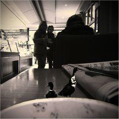 Zeitungsenten... was auf dem Tisch liegt ist oft weit hergeholt...
