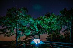 Zelten unter Bäumen