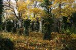 Zentralfriedhof: alter jüdischer Friedhof (2)