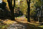 Zentralfriedhof: alter jüdischer Friedhof