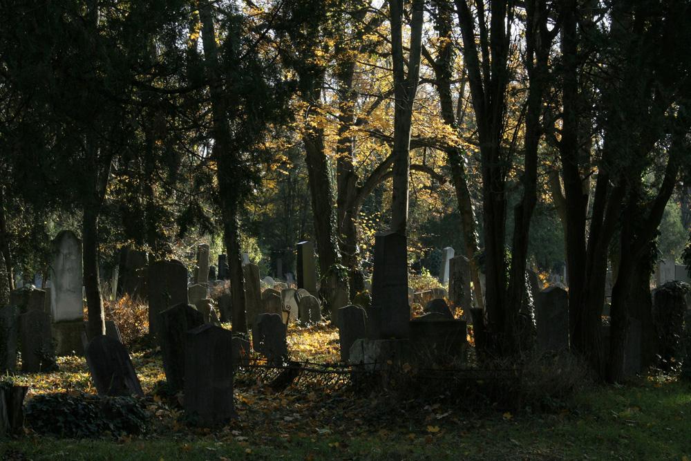 Zentralfriedhof: alter jüdischer Friedhof (3)