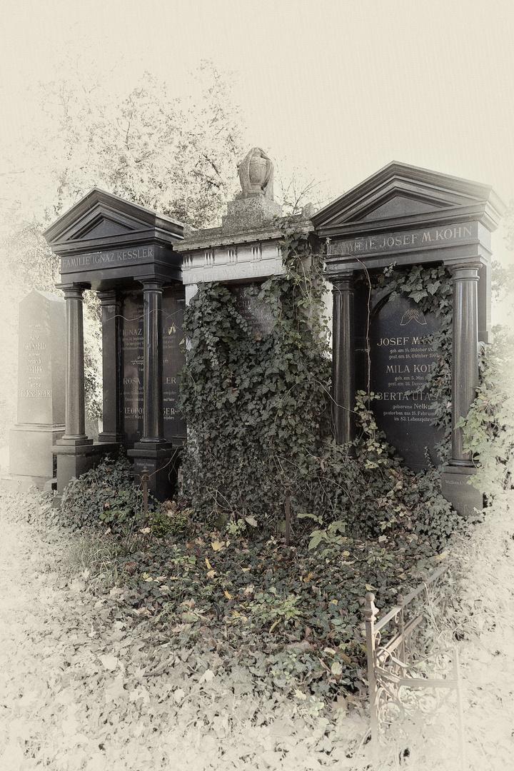 Zentralfriedhof wien 1