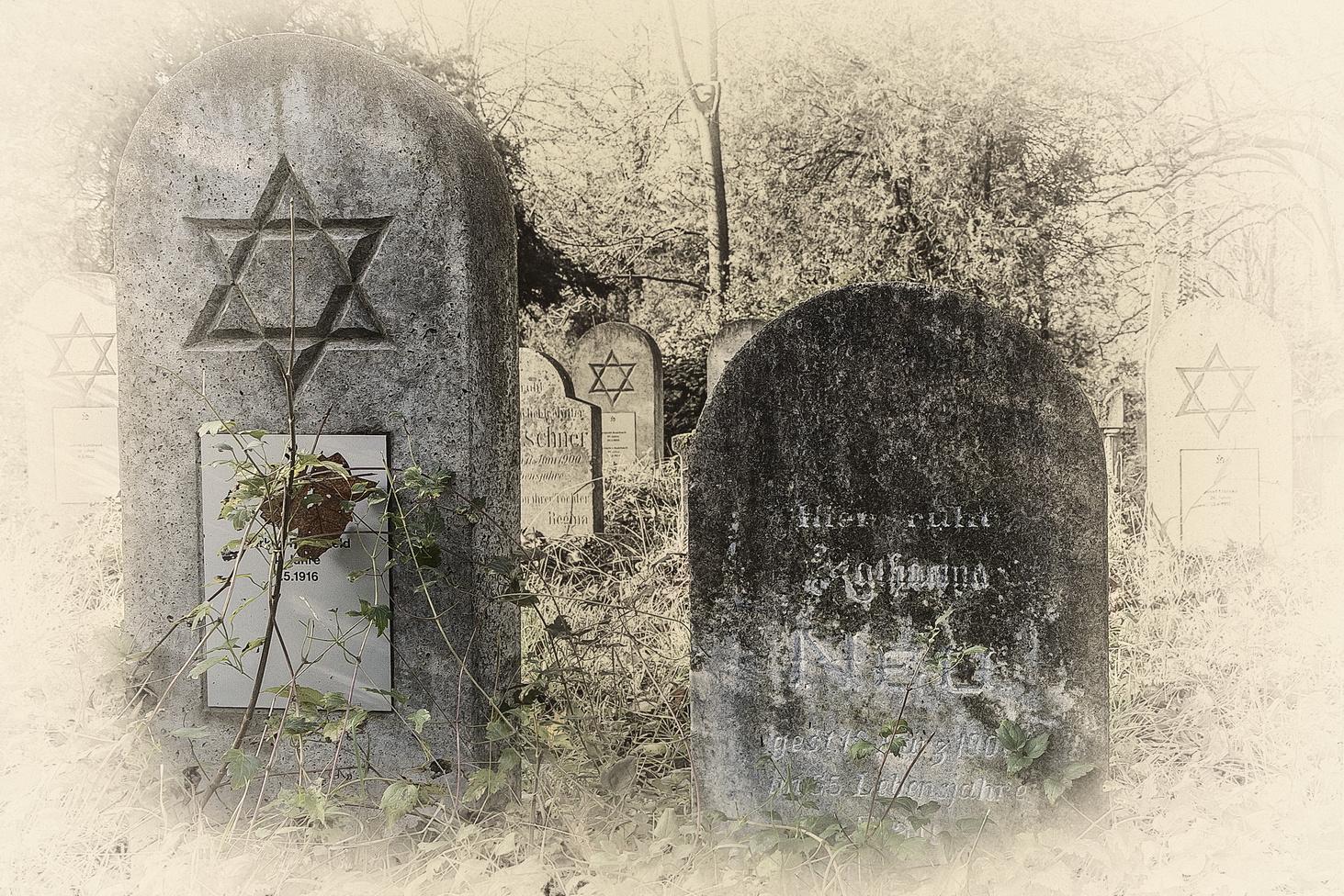 Zentralfriedhof Wien 3