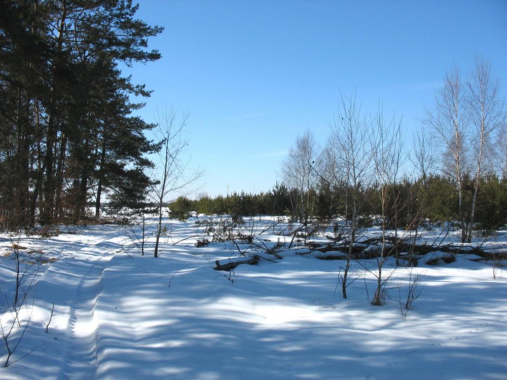 Zima w Bialce