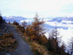 Zirbenweg