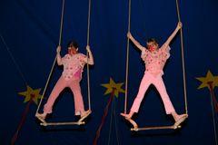 Zirkus Blamage