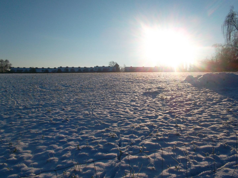 zon en sneeuw