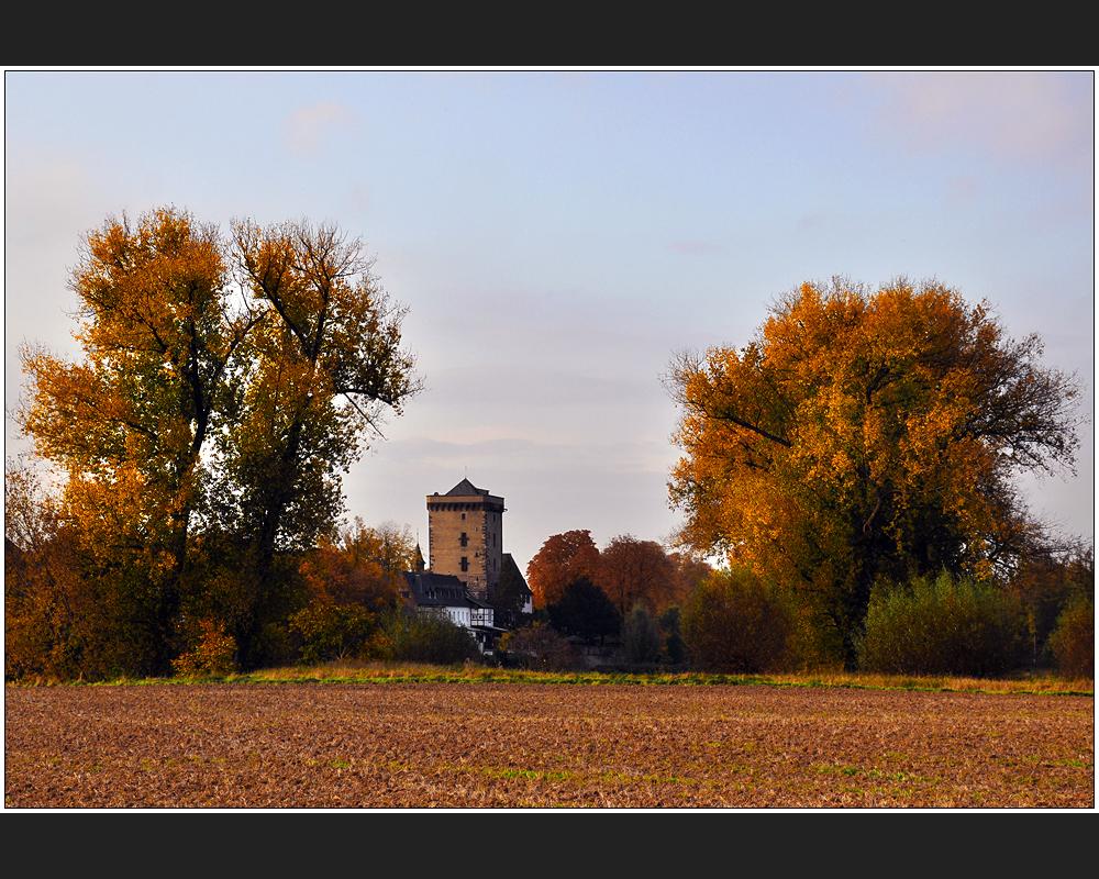 Zonser Herbst