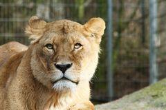 Zoo Osnabrück 23.01.2014_Bild02