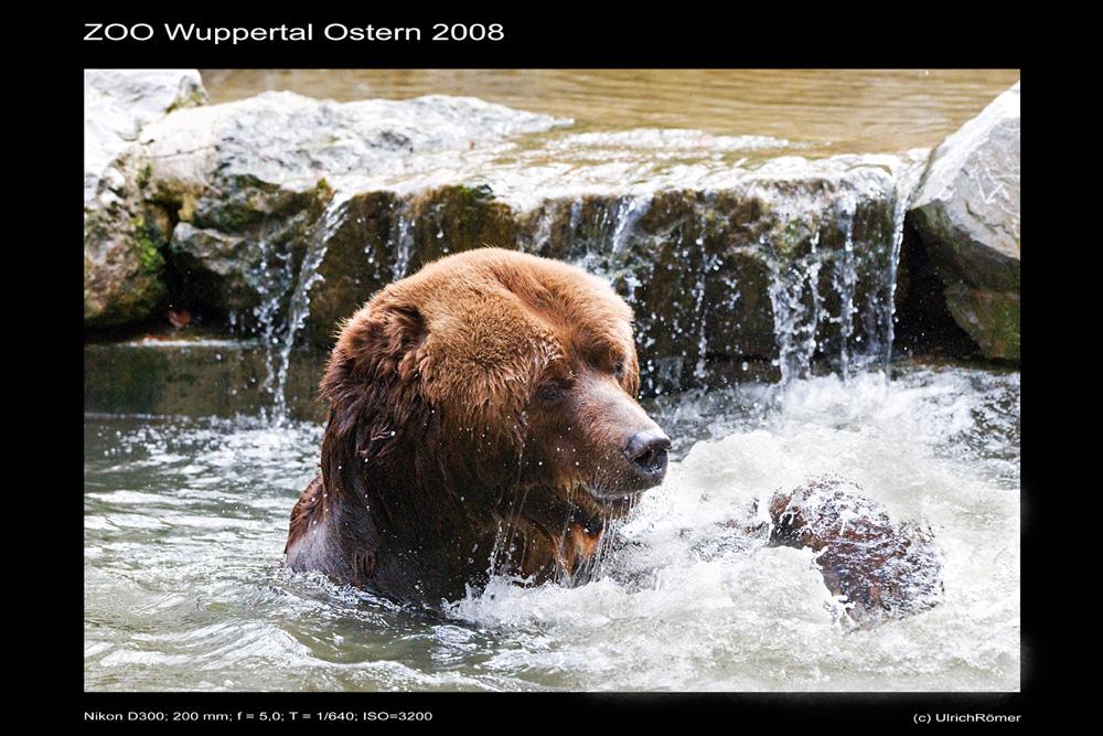Zoo Wuppertal 3