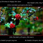 Zorionak eta Urte Berri On - Feliz Navidad y un Próspero Año nuevo