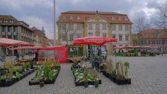 zu Besuch in Erlangen (de visita en Erlangen)
