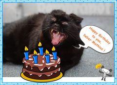 Zu deinem Geburtstag ...