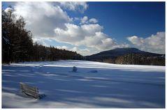 - Zu viel Schnee ... -