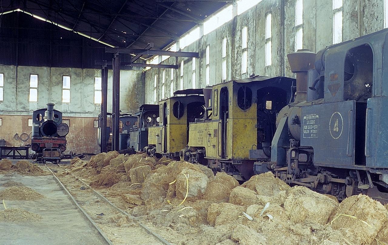 Zuckerfabrik PG Comal, Tegal (Java, Indonesien), Juni 2003