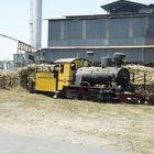Zuckerfabrik PG Gempolkerep, Mojokerto (Java, Indonesien), August 2000