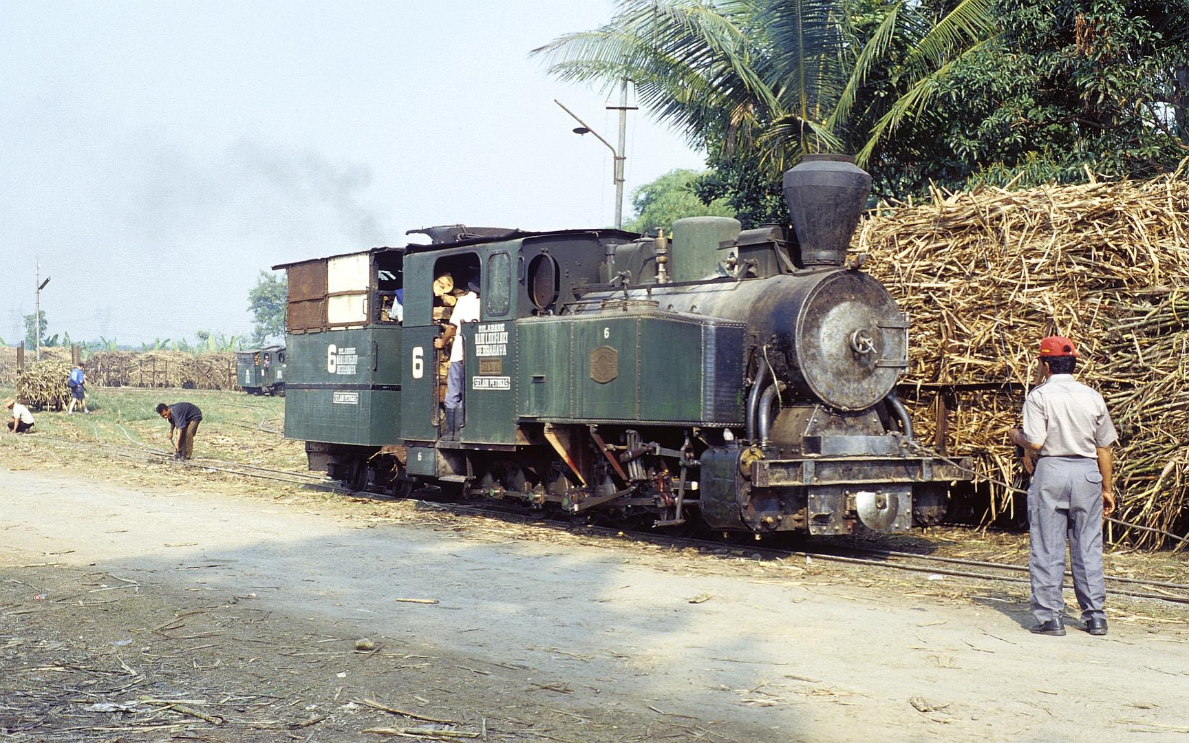 Zuckerfabrik PG Sragi, Pekalongan (Java, Indonesien),Juli 2002
