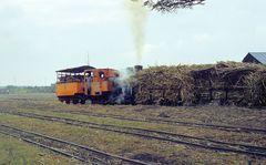 Zuckerfabrik PG Tersana Baru, Losari (Java, Indonesien), Juni 2003
