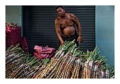 Zuckerrohrverkäufer in Phnom Penh