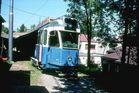 Züri-Tram als Pfadi- und Kinderlager