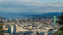 Zürich von der Waid aus
