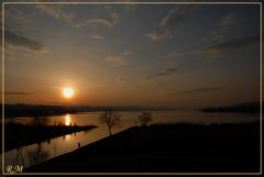 Zürichsee bei Pfäffikon SZ