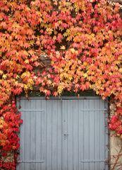 Zufahrt meiner Garage im Herbstlaub