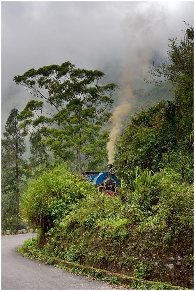 Zug im Bergwald