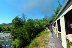 Zugfaht durch das Gordontal - Blick aus dem Zugfenster nach vorne