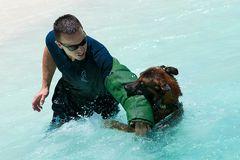 Zugriff im Wasser, K9 Unit, St.Maarten, Niederländische Antillen