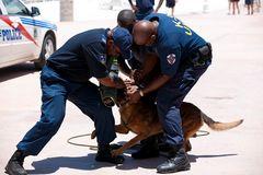 Zugriff K9 Unit, St.Maarten, Niederländische Antillen