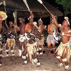 Zulus - Tanzend im Kraal