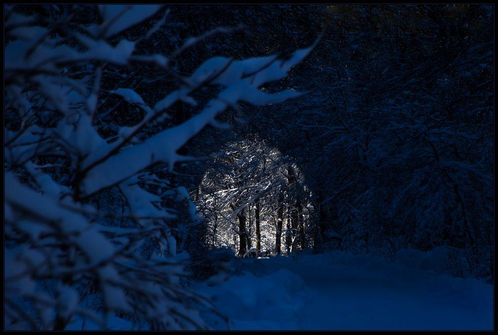 Zum 4. Advent, zur stillen Weihnacht: ...ZUM LICHT...